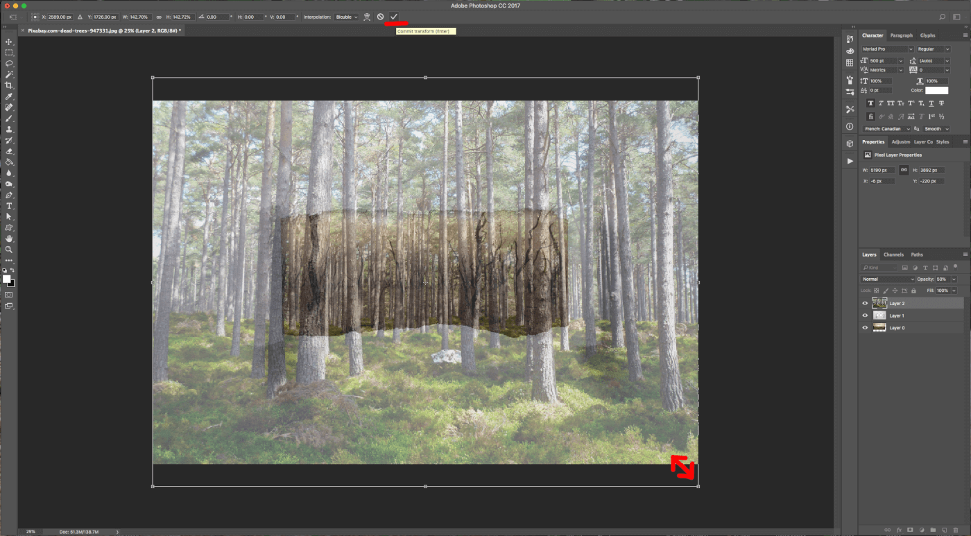 How To Create a Torn Image Overlap in Photoshop